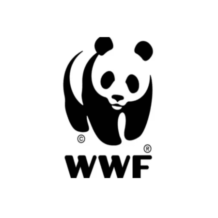 WE STAND UP FOR NATURE WWF Sponsorship 0Bills DIY Solar and Wind Energy